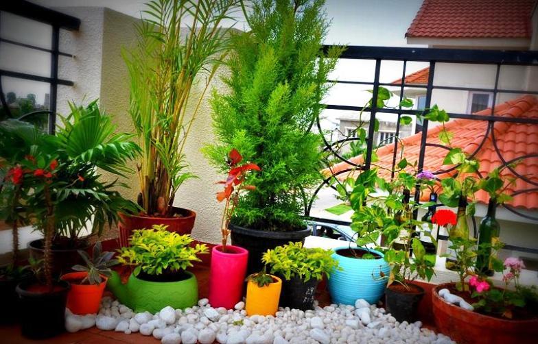 gardening-niche